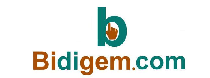 Bidigem.com