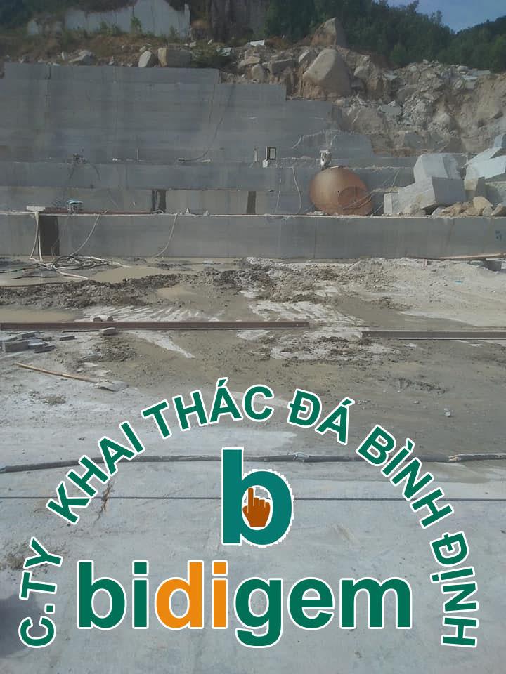 Công ty khai thác đá Bình Định