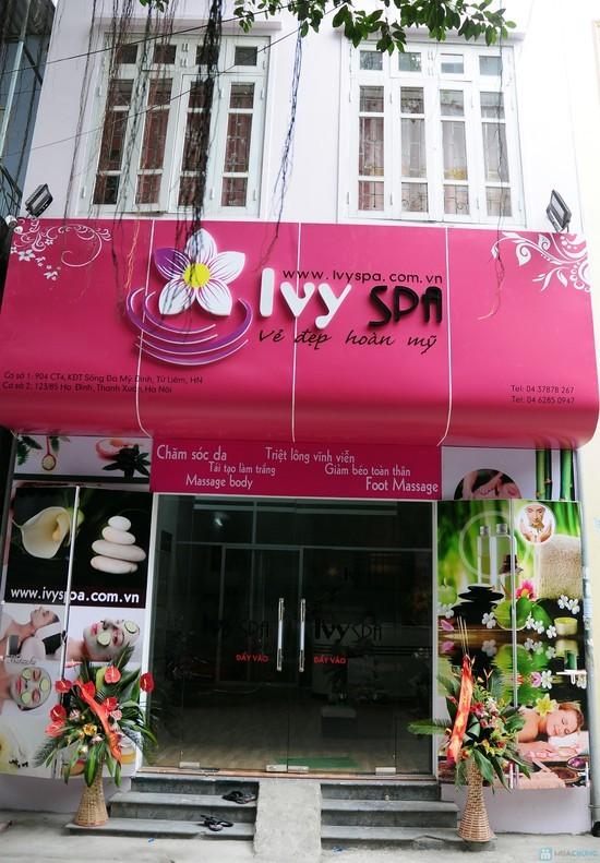 ivy-spa-bien-quang-cao-bidibook